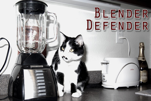 Kitty In A Blender ~ Blenderdefender all cat owners must see